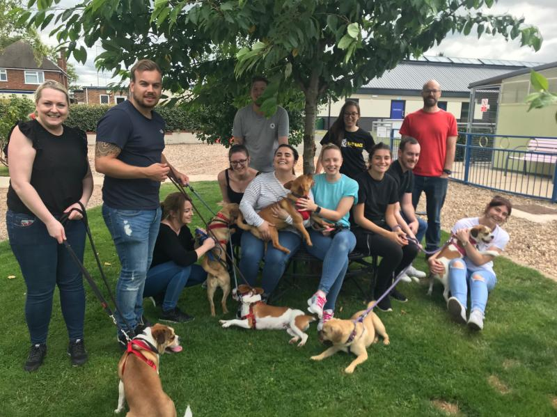 Volunteers walking dogs at Radcliffe Animal Centre